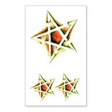 TTSY-A139 Временная татуировка Пентаграмма, 60х105мм