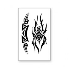 TTWM-156 Временная татуировка Паук и Узор, 60х105мм